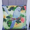 Australian bird collection