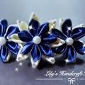 Stunning Handmade hair clip and headband