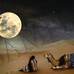 002 Desert Moon poster A4 Size