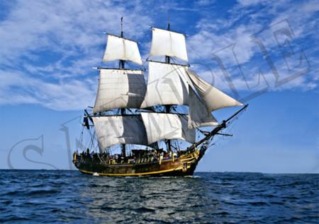 008 Sailing Ship poster A4 Size