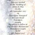 GOLD AND SILVER BOKEH WEDDING INVITATIONS