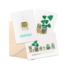 Birthday Card Pack - Set of 3 Cards - CP3_014 - Indoor Plants