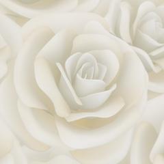 10 x Cream Rose Envelopes