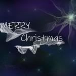 Colour Christmas Cards