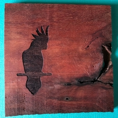 Engraved Redgum Coasters - Cockatoo