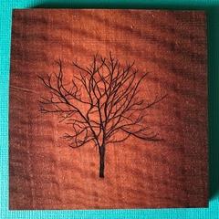 Engraved Redgum Coasters - Tree 1