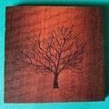 Engraved Redgum Coasters - Tree 4