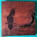 Engraved Redgum Coasters - Cockatoo