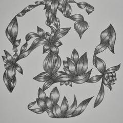 hand drawn abstract nature