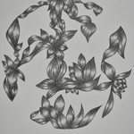 hand drawn abstract nature