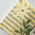 Birthday Card - Large Daisies