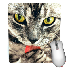 Mouse Pad - Cat Licking Paw - Cat mousepad
