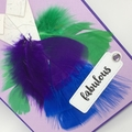 Blank Card - Feather dress 'fabulous'