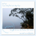 Collection: Summer Morning Mist, Wentworth Falls Lake
