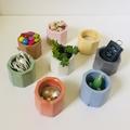 Cute & Colourful Concrete Planters