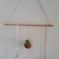 Hanging Kokedama - Boho Inspired
