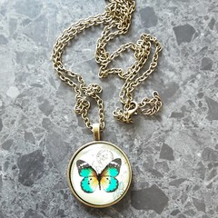 Buttterfly glass pendant / necklace