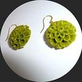 Carved green Tridacna earrings