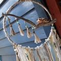 LoveBirds Beads Ribbon Blue Beach Decor Moonstone Wallhanging Driftwood Tassel