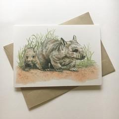 Hairy-nosed Wombats  greeting card Australian wildlife art