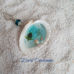 Mermaid's Treasure Clam Shell Necklace