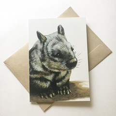 Hairy-Nosed Wombat greeting card Australian wildlife art animal portrait