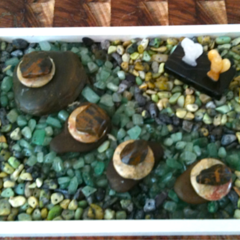 AMEOGEM'S ZENGEM Garden with Genuine Pilbara, Avernturine   and Serpentine Gems.