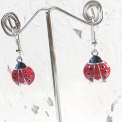 Sweet Little Red Black Ladybug Charm Earrings