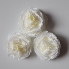 Ivory Rose Petal Cabbage Rose Flowers