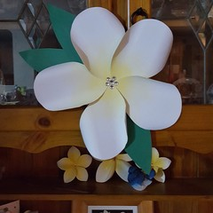 Giant Paper Frangipani Flower Wedding / Party Decorations (6 Pack)