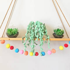 Crochet String of Pearls Hanging Plant, Housewarming Gift