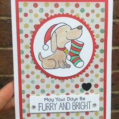 Christmas Card - Dog