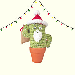 Crochet Santa Cactus with Santa Sack