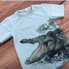 Crocodile Size 10