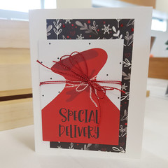 Special Delivery Christmas Card, Greeting Card