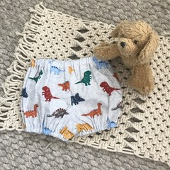 Little Boy Nappy CoversSize 2