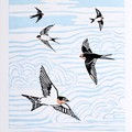 Welcome Swallow Original Lino Cut Print / Australian Bird