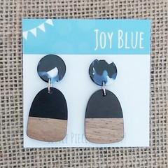 Wood and acrylic earrings