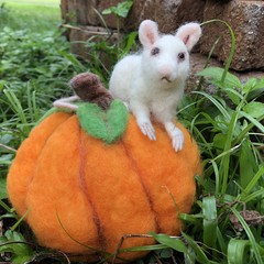 needle felted mouse, needle felted pumpkin, Thanksgiving decor