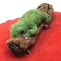 Frog brooch, needle felted Animal, green tree frog,