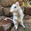 needle felted mouse, rat, needle felted animal, OOAK handmade