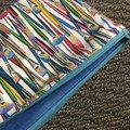 Colourful paintbrushes pencil case