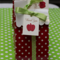 12 Apple Gift Tags  Teachers Tags Thank You Gift Tags Thank you Tags