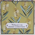 Set of 4 Christmas card with a hint of Australia