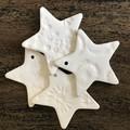 1x Star Christmas Decoration