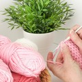 Crochet Stock Photo - Pink Wool, Crochet Hook and Plant