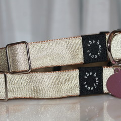 Hollywood nights dog collar with personalised engraved tag