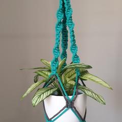 Green/Grey Medium Macrame Plant Pot Hanger