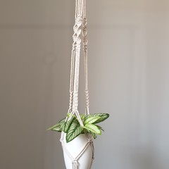 Tall natural tone macrame plant pot hanger