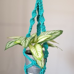 Teal Green Macrame Pot Plant Holder